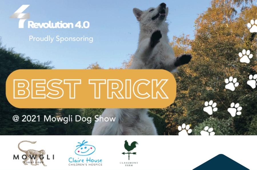 Digital marekting agency Revolution Four to sponsor Mowgli dog show 2021